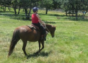 Riding in the pasture