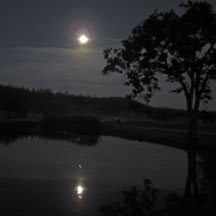 Moonrise-over-pond